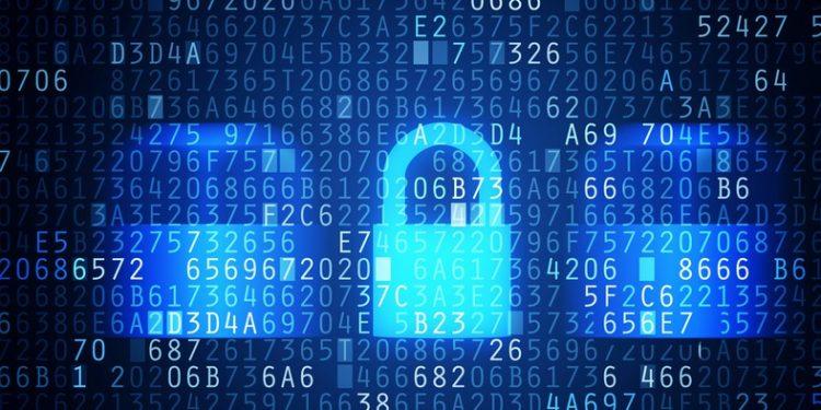 Data Protection in Business digital world organization